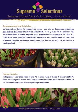 Semana promocional de la tulipa