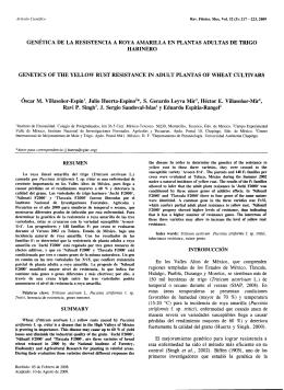 genetic a de la resistencia a roya amarilla en plantas adultas de