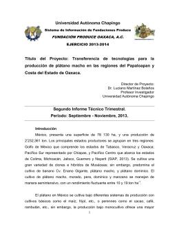 Universidad Autónoma Chapingo Título del Proyecto