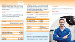 B-Vehiculos-Econo clasico max