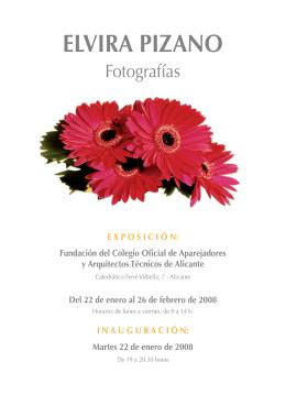 Exposicion Elvira.indd - Colegio Oficial de Aparejadores y