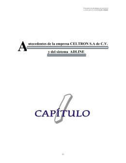 Antecedentes de la empresa Celtron s.a de c.v. y