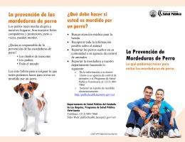 La prevención de las mordeduras de perro La Prevención de