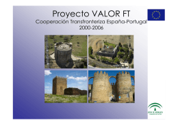 Proyecto VALOR FT