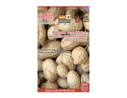 Paquete tecnologico para alta productividad de cacahuate