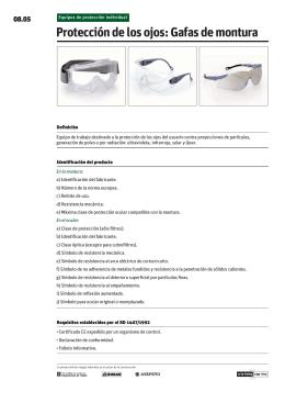 Protección de los ojos: Gafas de montura