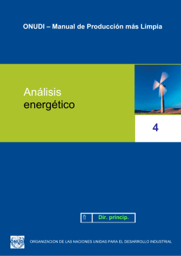 Análisis energético 4