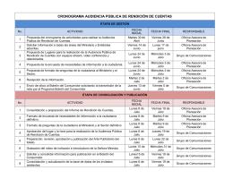 CRONOGRAMA AUDIENCIA PÚBLICA DE