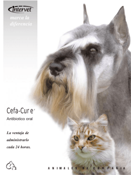 Folleto Cefa Cure - MSD Salud Animal