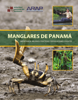 Manglares de Panamá - Wetlands International