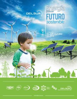 Licitación DELSUR-CLP-RNV 001-2013