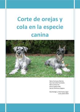 Corte de orejas y cola en la especie canina