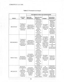 CONSORCIO C & C 045 Tabla 3. Priorización de riesgos