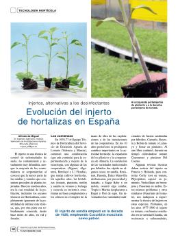 Evolución del injerto de hortalizas en España