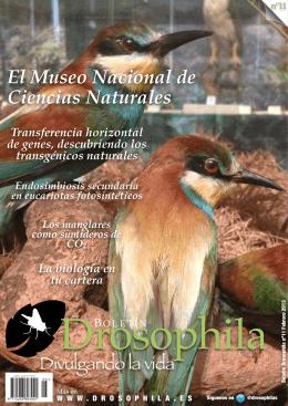 El Museo Nacional de Ciencias Naturales
