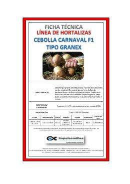 PRESENTACIÓN Lata X 100.000 Semillas