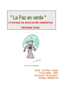 200600119_14fichas_informe