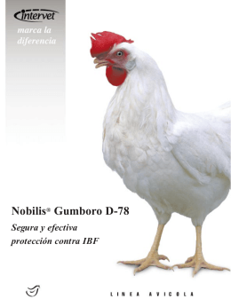 Folleto Nobilis® Gumboro D78