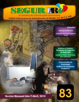 Revista SEGURIIAR No. 83 Abril, 2010