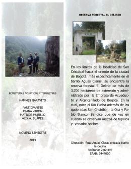 En los límites de la localidad de San Cristóbal hacia el oriente de la