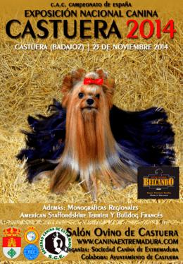 castuera (23/11/2014)