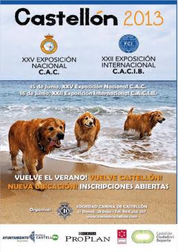 castellón (15/06/2013)