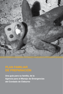 PLAN FAMILIAR DE PREPARACIÓN