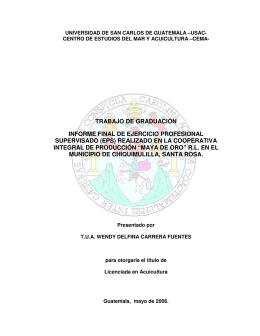 trabajo de graduación informe final de ejercicio profesional