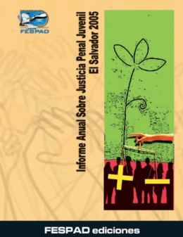informe anual sobre la justicia penal juvenil el salvador 2005