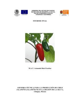 Asesoría técnica para la producción de chile jalapeño en la región