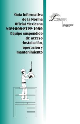 NOM-009-STPS-1999, Equipo suspendido de acceso