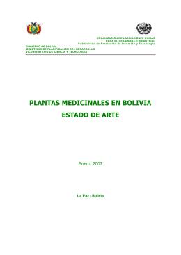 plantas medicinales en bolivia estado de arte