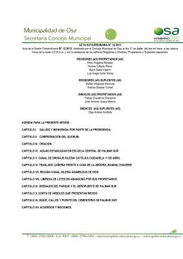 Acta Extraordinaria N°12-2013