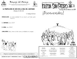 Boletín 06 de febrero de 2011
