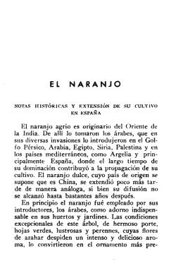 El naranjo. Notas históricas y extensión de su cultivo en España