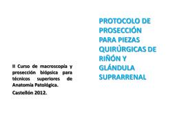 Archivo PDF - III Curso de macroscopía y Prosección biópsica para