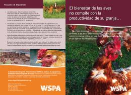 El bienestar de las aves no compite con la productividad de su