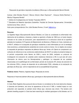 Respuesta de genotipos mejorados de plátanos (Musa spp.) a