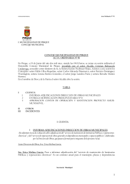 ACTA Nº 91 03-06-2011 - Municipalidad de Pirque