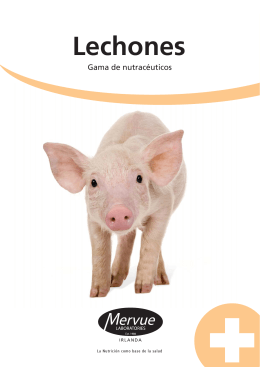 piglet brochure spanish_Layout 1