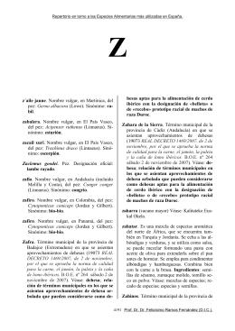 Z - Historia de la Cocina
