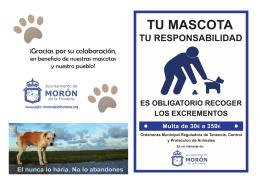 díptico informativo - Ayuntamiento de Morón de la Frontera