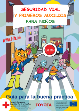 Guía para la buena práctica - European Red Cross Road Safety