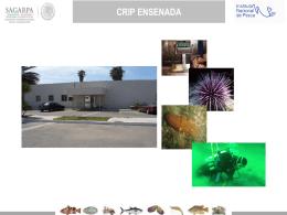 5.3 Universo de proyectos pesqueros y acuícolas (Fichas