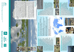 folleto de WLI - Wetland Link International