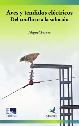 Aves y tendidos eléctricos: del conflicto a la solución