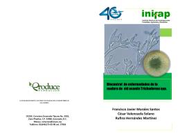 Biocontrol de enfermedades de la madera de vid usando