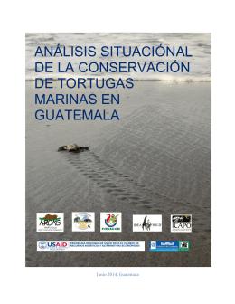 ANÁLISIS SITUACIÓ DE LA CONSERVAC DE TORTUGAS