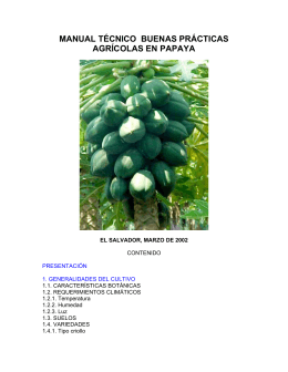 MANUAL TÉCNICO BUENAS PRÁCTICAS AGRÍCOLAS EN PAPAYA