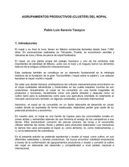 AGRUPAMIENTOS PRODUCTIVOS (CLUSTER) DEL NOPAL Pablo